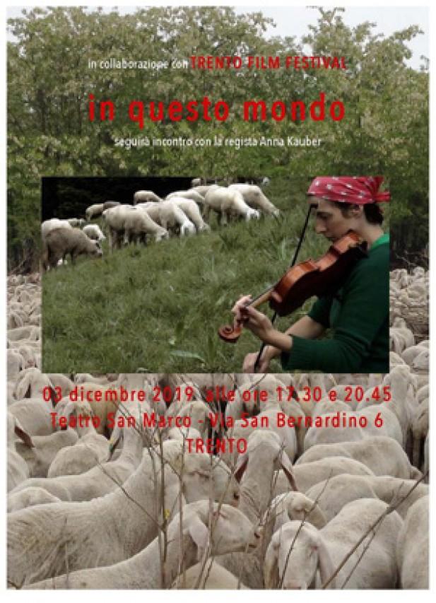Questa sera a Trento il film