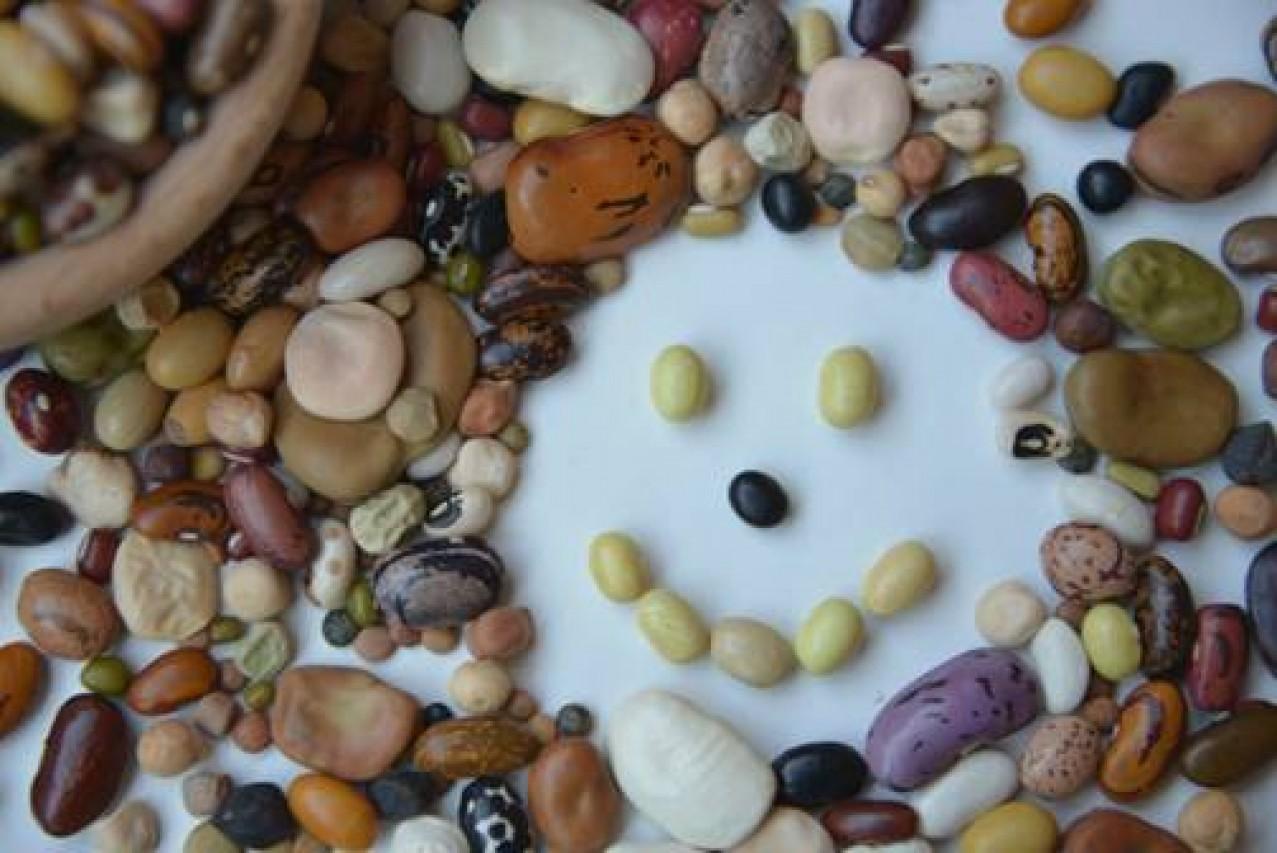 Slow Beans negli Orti del MUSE