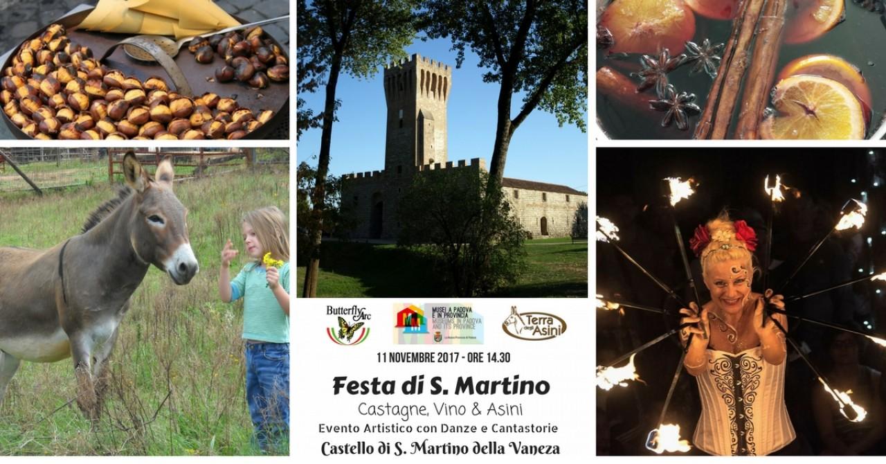 Festa di San Martino al Castello di San Martino della Vaneza