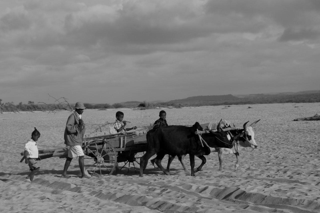 Giornate del Madagascar 2015. L'isola di Marco Polo