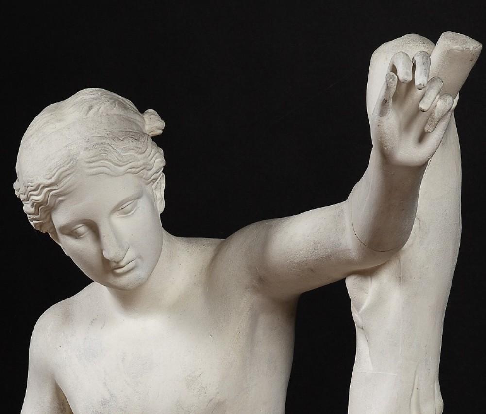 Apertura straordinaria del Museo di Archeologia dell'Università di Pavia