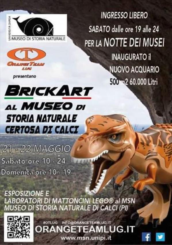 Notte europea dei Musei 2016 - BrickArt al Museo di Storia Naturale di Calci