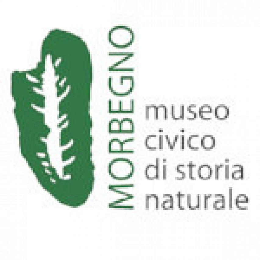 Auguri e video Museo
