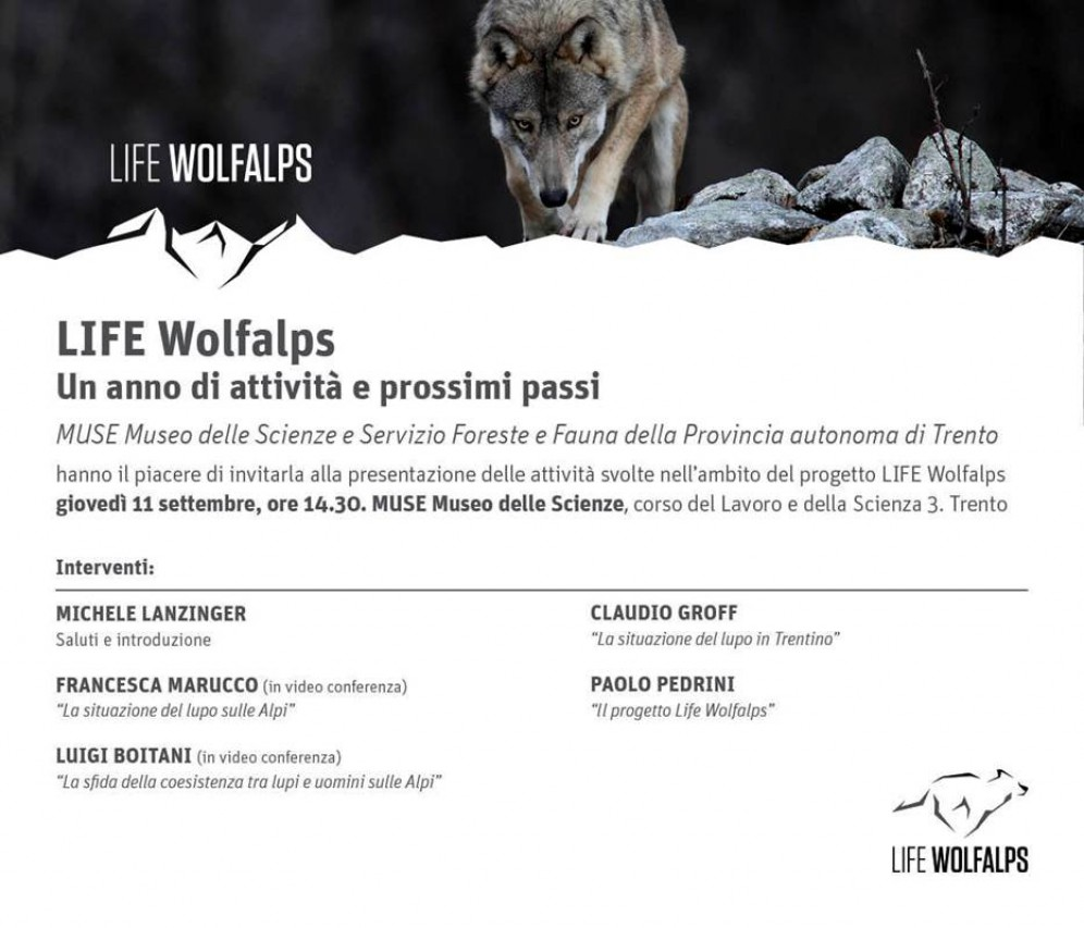 LIFE WOLFALPS