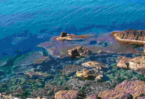 Uno sguardo alla Natura della Sardegna
