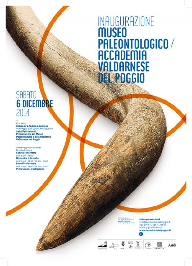 RIAPRE IL MUSEO PALEONTOLOGICO DI MONTEVARCHI