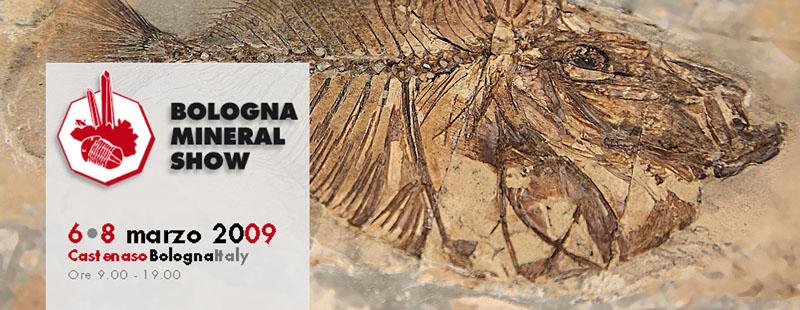 40° Bologna Mineral Show