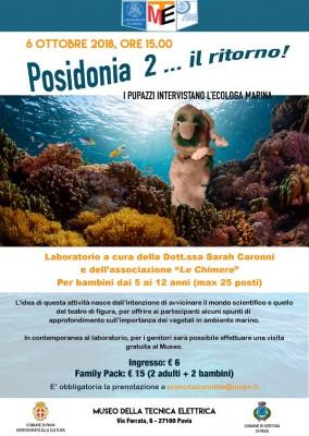Posidonia oceanica .... il ritorno! Dibattito tra i pupazzi e l'ecologa Marina