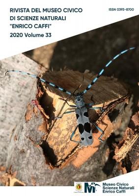 Volume 33 rivista del Museo di Scienze Naturali di Bergamo