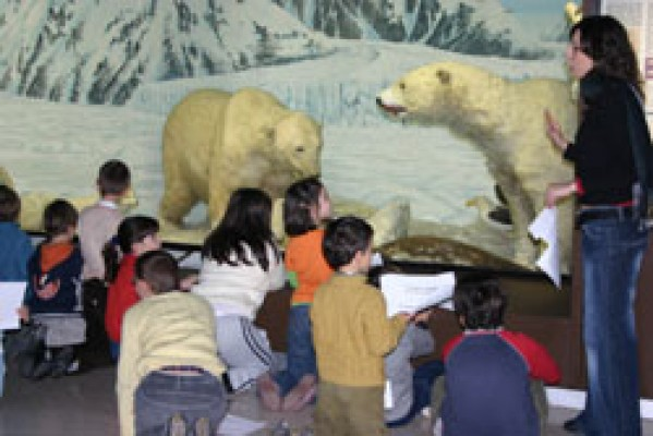 E' estate al Museo di Storia Naturale di Milano