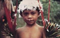 Cultura tradizionale e storia recente degli Yanomami nella collezione del Museo di Storia Naturale di Firenze