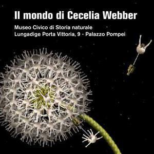 Il mondo di Cecelia Webber Meraviglie dell'arte digitale