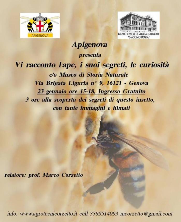 Vi racconto l'ape, i suoi segreti, le curiosità