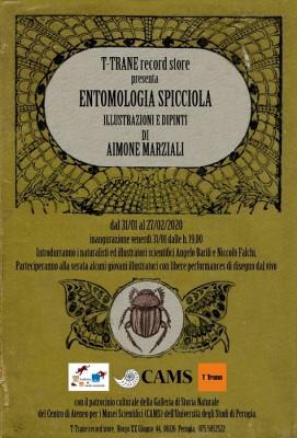 """Mostra """" Entomologia spicciola"""" - Illustrazioni e dipinti di Aimone Marziali"""