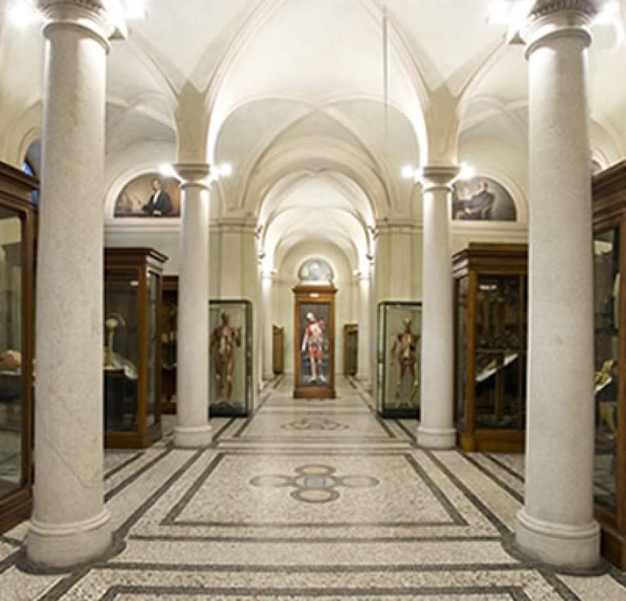 Musei gratuiti al palazzo degli Istituti Anatomici