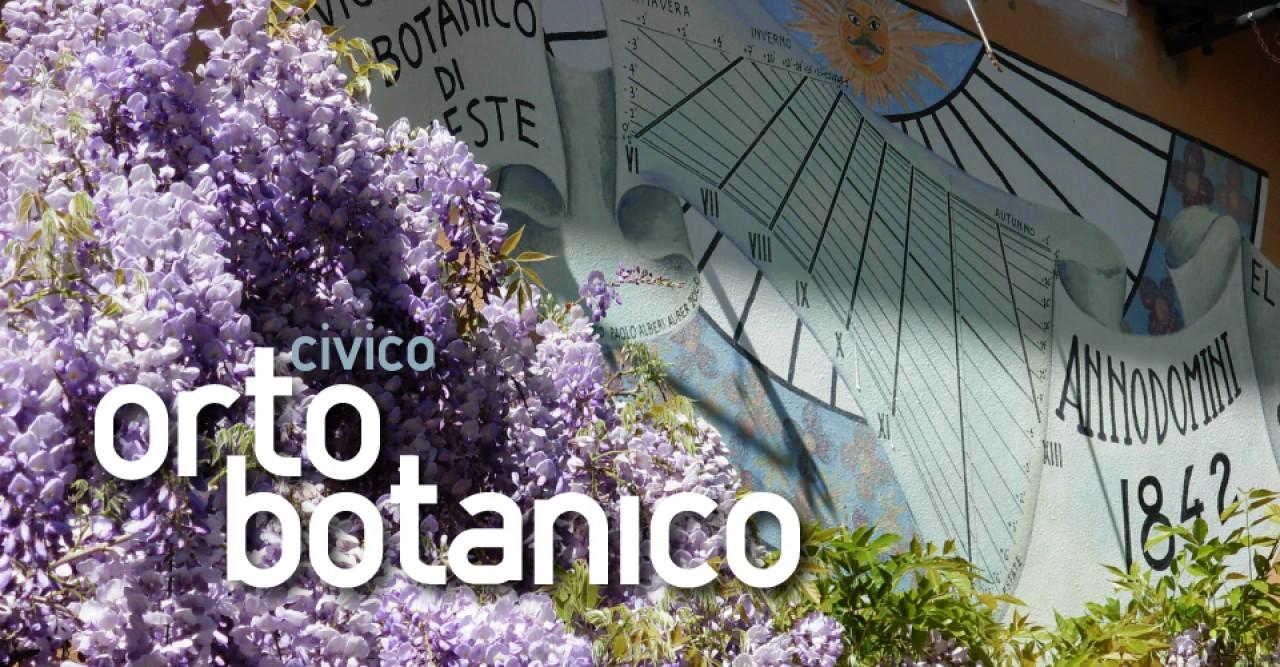 8 marzo 2017: festa della donna, riapre l'Orto Botanico di Trieste