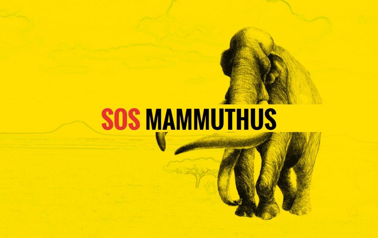 SOS MAMMUTHUS. Il crowdfunding su Eppela