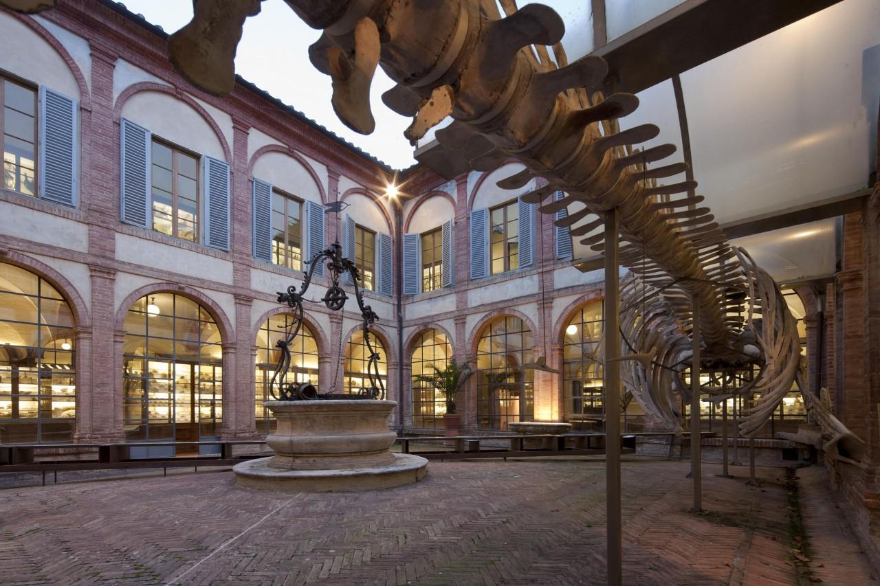 Notte europea dei Musei 2016 - Visite straordinarie all'Accademia dei Fisiocritici