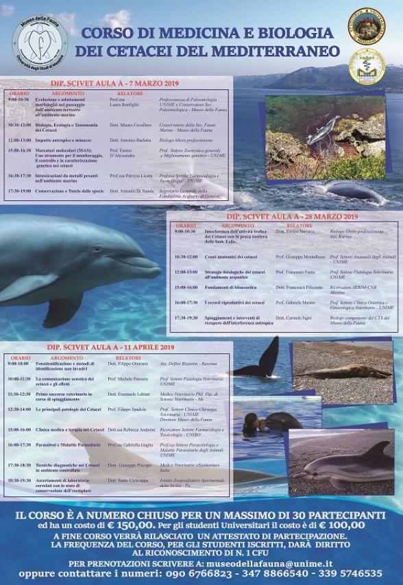 Corso di Medicina e Biologia dei Cetacei
