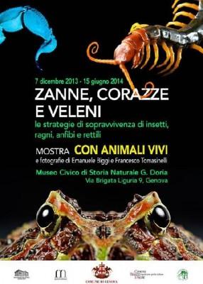 Zanne, corazze e veleni. Strategie di sopravvivenza di insetti, ragni, anfibi, rettili e...
