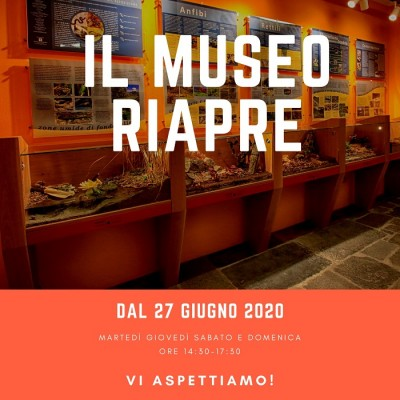 Il Museo riapre