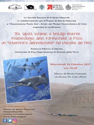 Tra squali, balene e bradipi marini - Conferenza di Alberto Collareta
