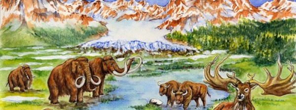 A spasso nell'Era glaciale. Chi pascolava nella Pianura Padana migliaia di anni fa?