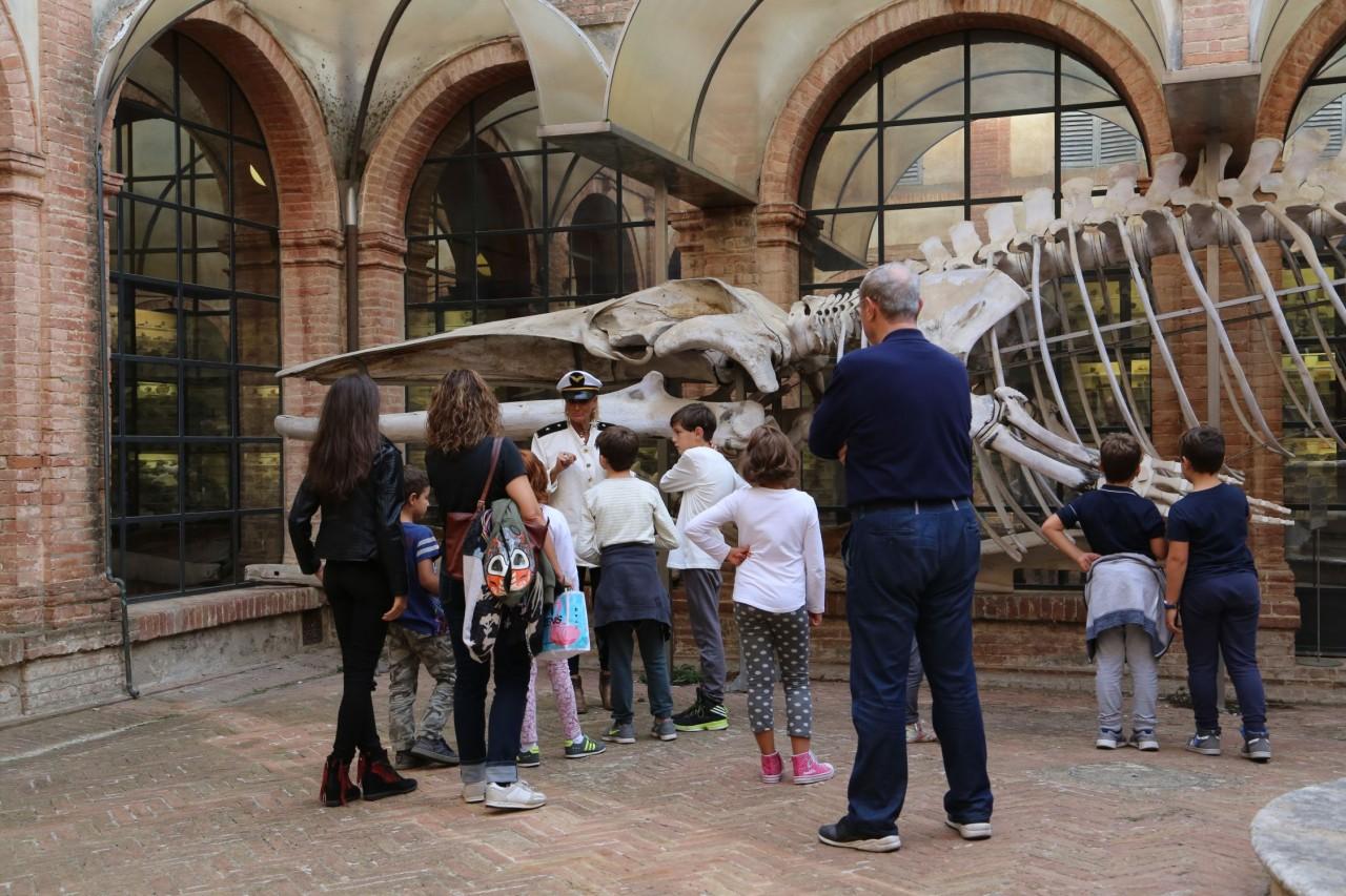 Tre le iniziative per Bright 2018 al Museo di Storia Naturale dell'Accademia dei Fisiocritici
