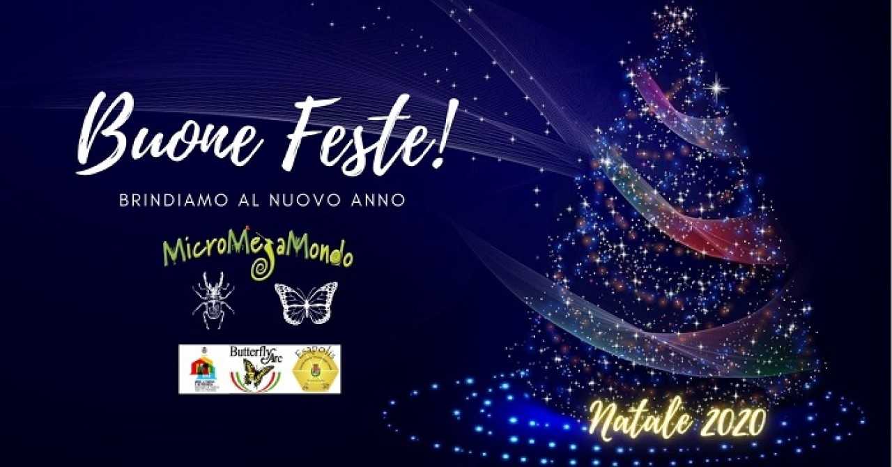 Buone Feste dal MicroMegaMondo!