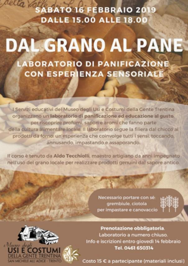 Dal grano al pane: laboratorio di panificazione con esperienza sensoriale