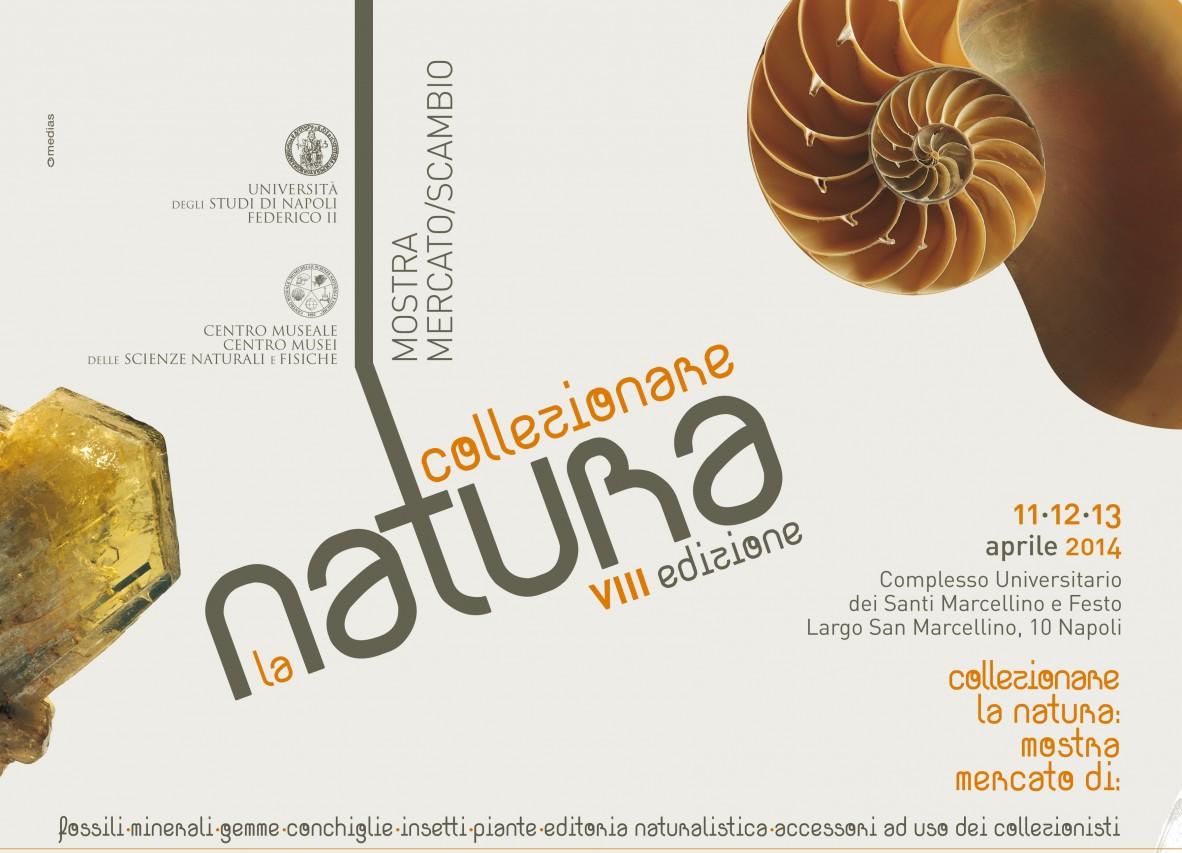 Collezionare la Natura