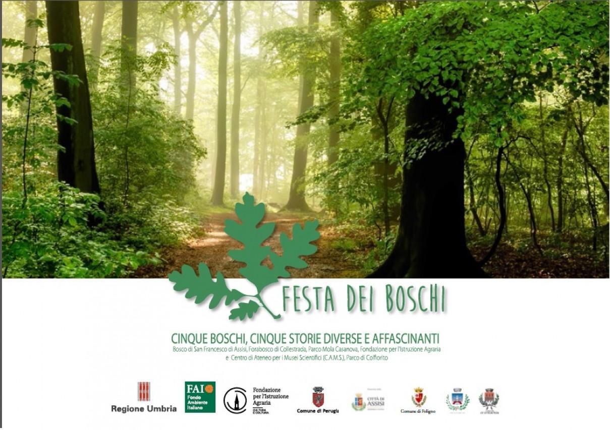 Festa dei Boschi - Cinque boschi, cinque storie diverse e affascinanti