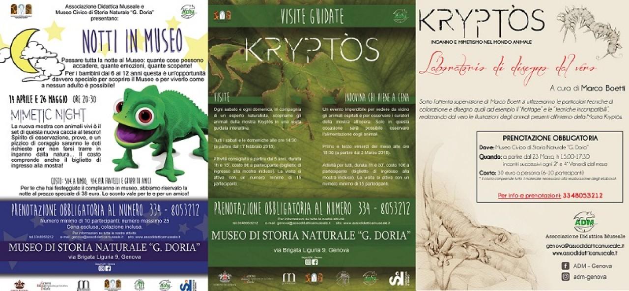 ULTIMO WEEKEND DI MAGGIO RICCO DI ATTIVITÀ AL MUSEO DI STORIA NATURALE