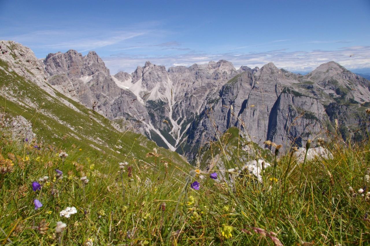 Verso la Rete ecologica del Trentino Incontro di presentazione dei risultati del Progetto europeo LIFE+T.E.N.
