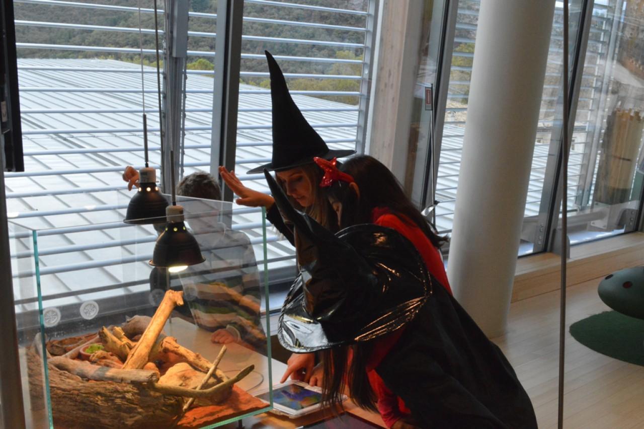 Halloween al MUSE