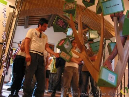 Nuovi orari di apertura e visite tematiche al Museo del fiore