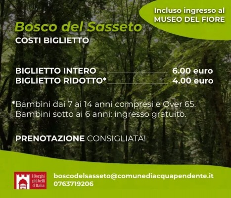 Il Bosco del Sasseto