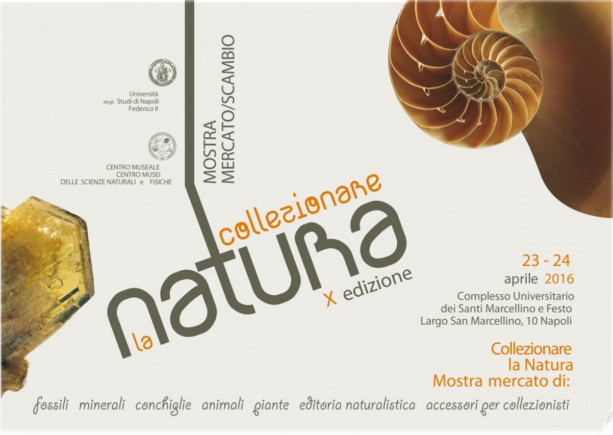 Collezionare la Natura! 10 anni di appuntamenti!