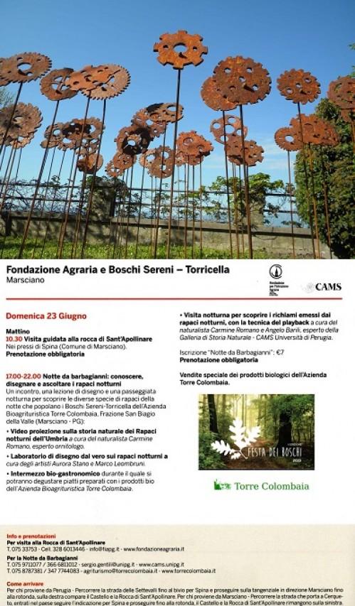 Il Giardino delle Rotelle Mancanti e Festa dei Boschi V° Edizione 2019