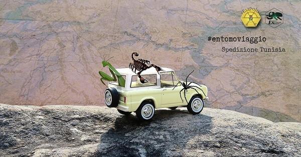 Entomoviaggio in Tunisia dei Giovani Naturalisti di Esapolis