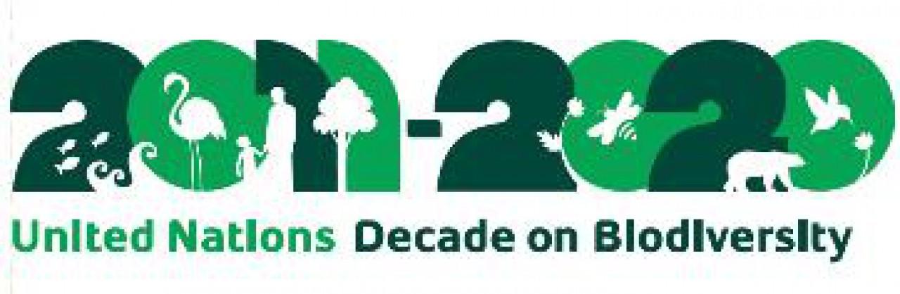 Giornata Mondiale della Biodiversità: il museo la dedica al Po di Primaro