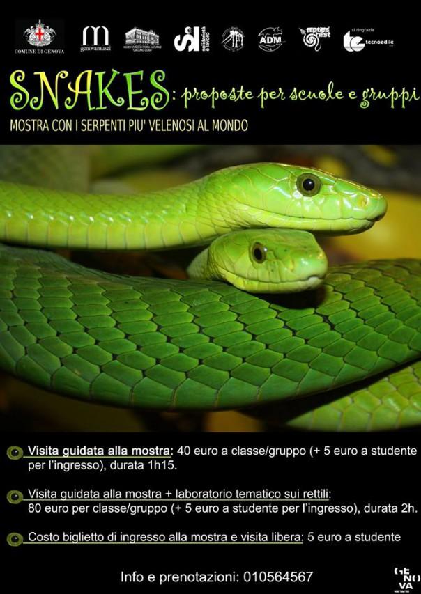 SNAKES – con i serpenti più velenosi del mondo