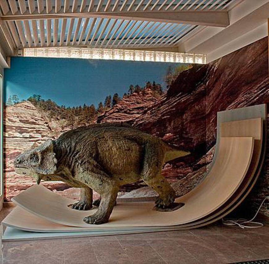 Una settimana d'intensa attività al Museo Geologico delle Dolomiti a   Predazzo