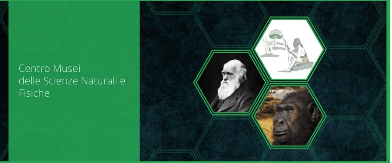 Grazie Darwin 2018