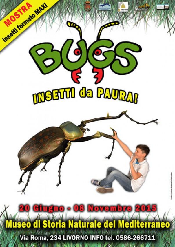 BUGS, insetti da paura