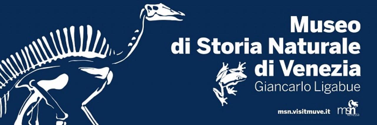 PERCORSI GUIDATI AL MUSEO DI STORIA NATURALE