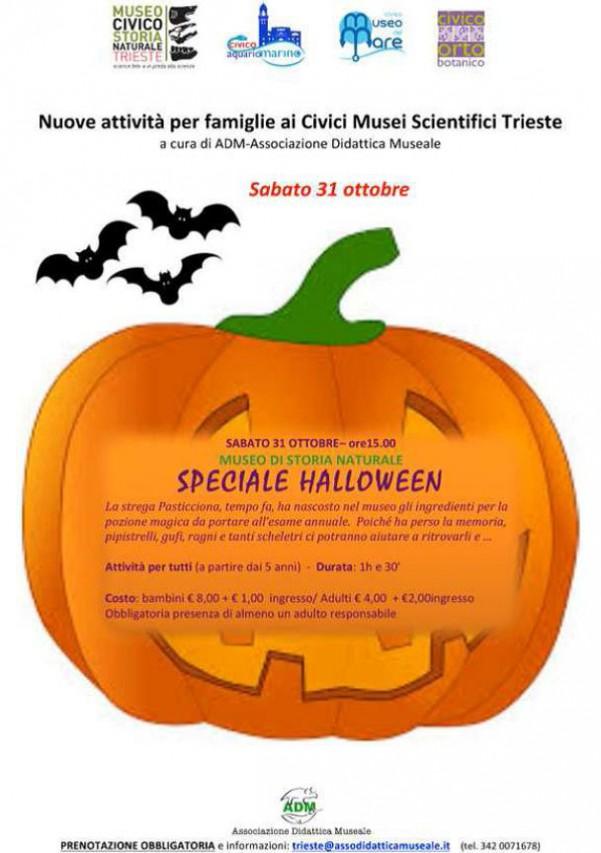 Speciale Halloween al Museo di Storia Naturale di Trieste!