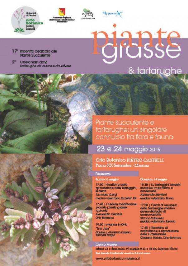 """""""Piante succulente e tartarughe: un singolare connubio tra flora e fauna"""""""