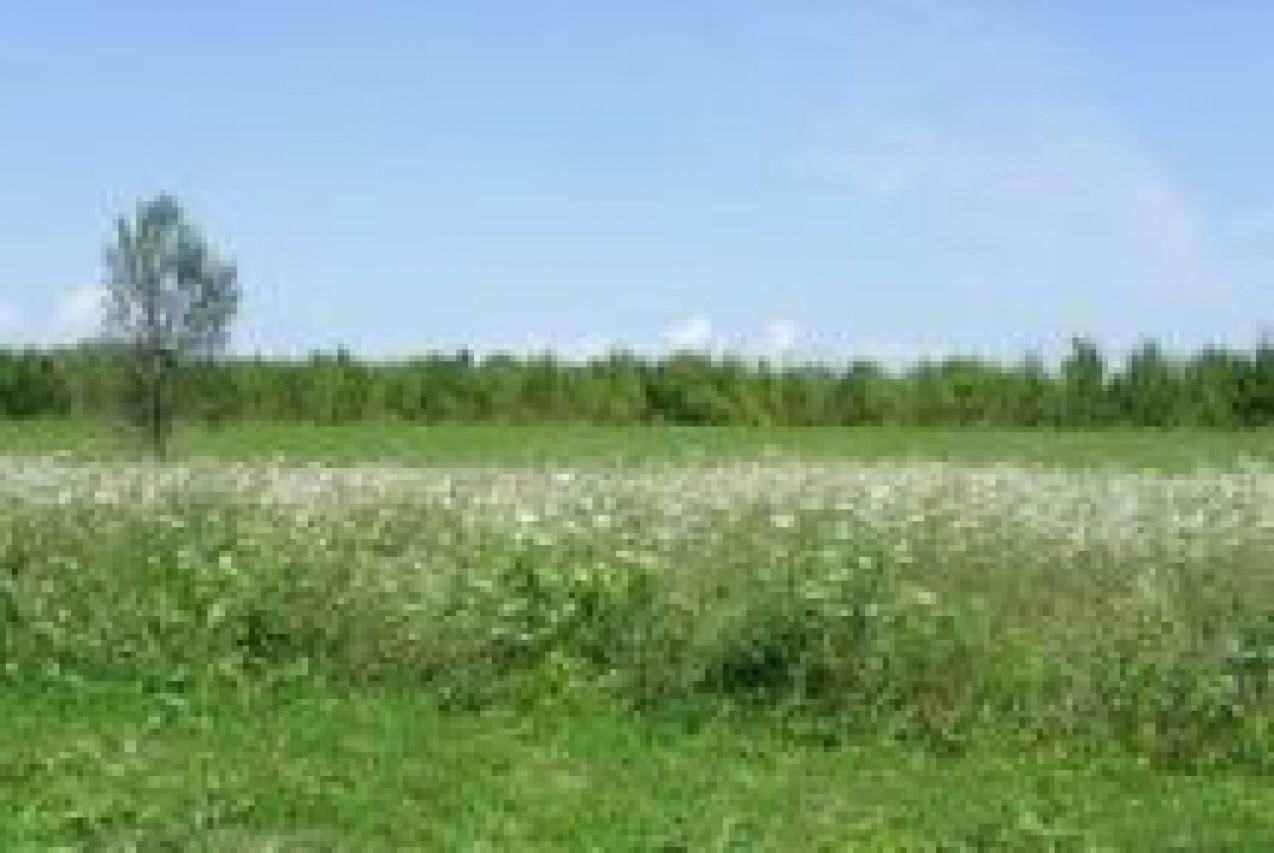 Biodiversamente al bosco. Un sottile equilibrio tra natura e agricoltura