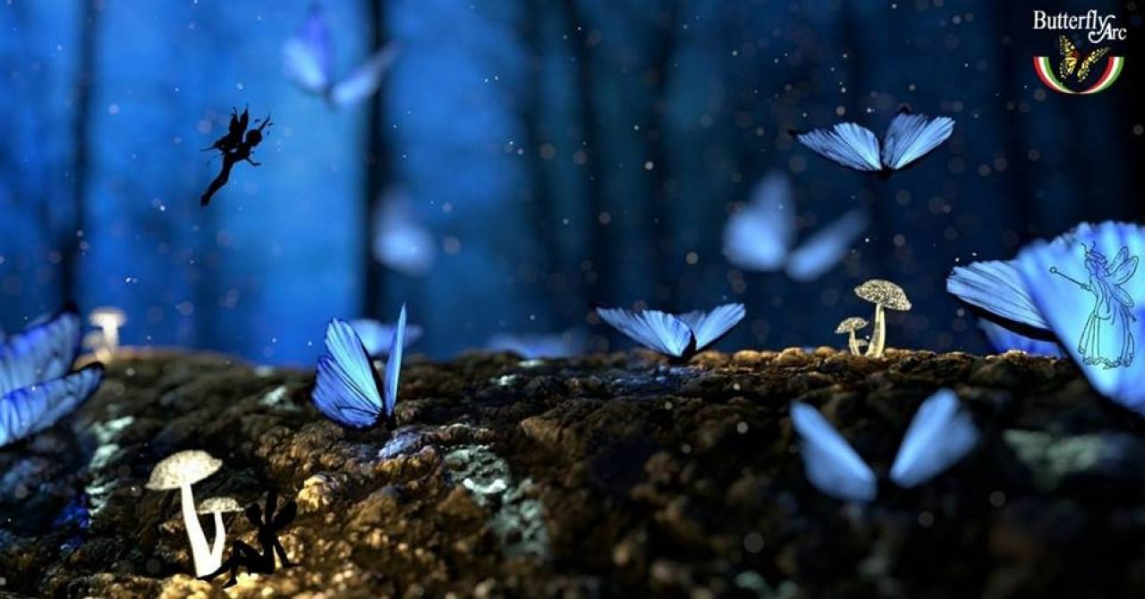 Festa delle Farfalle alla Butterfly Arc Domenica 7 Maggio